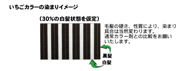 イチゴカラーの染まりのイメージはこんな状態